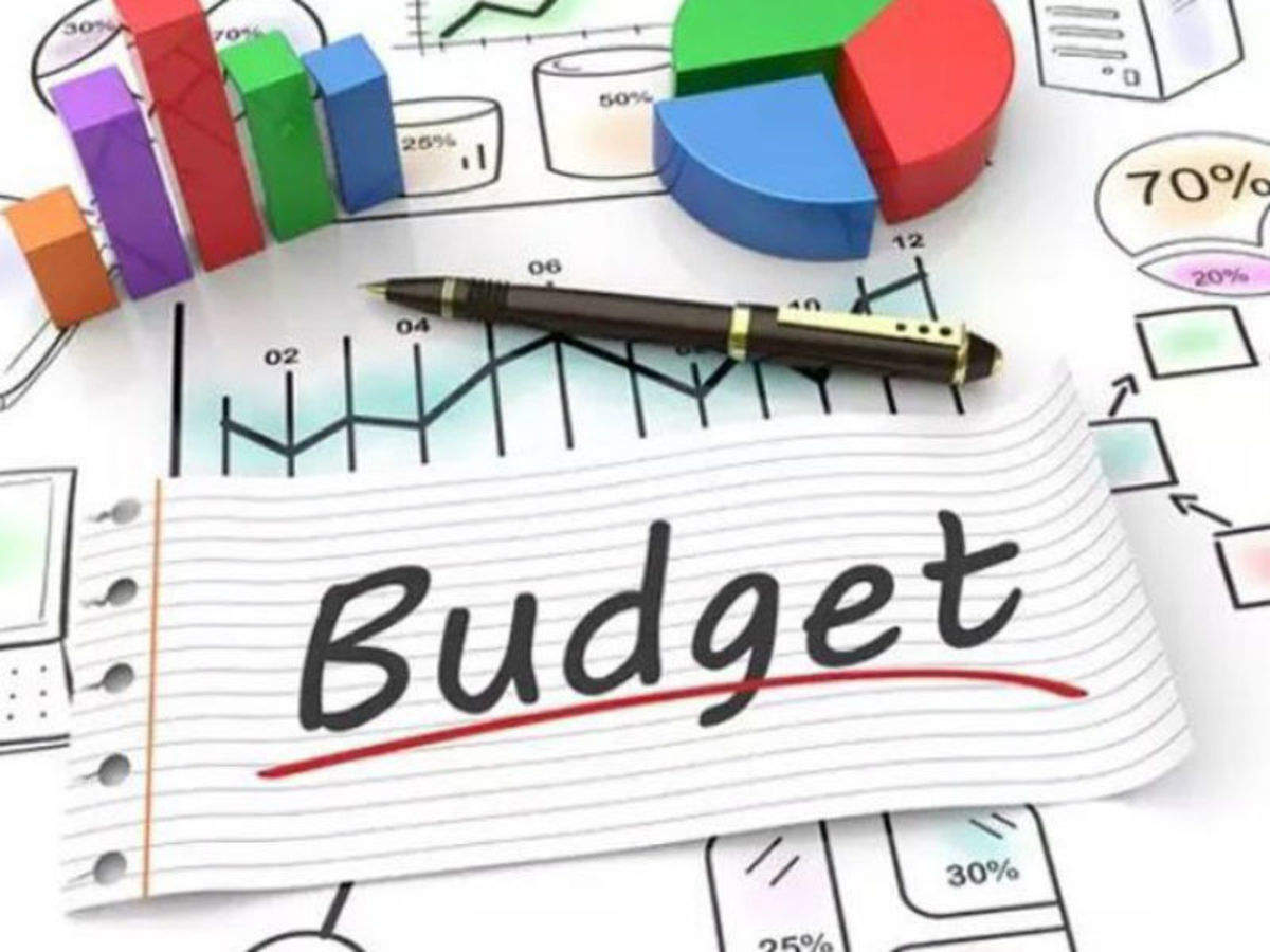 Positive and Negative Points of Budget 2021-2022