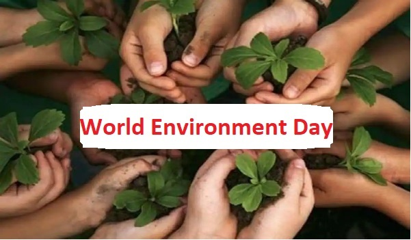World Environment Day 2021 Theme, History, Celebrate, Environment Day