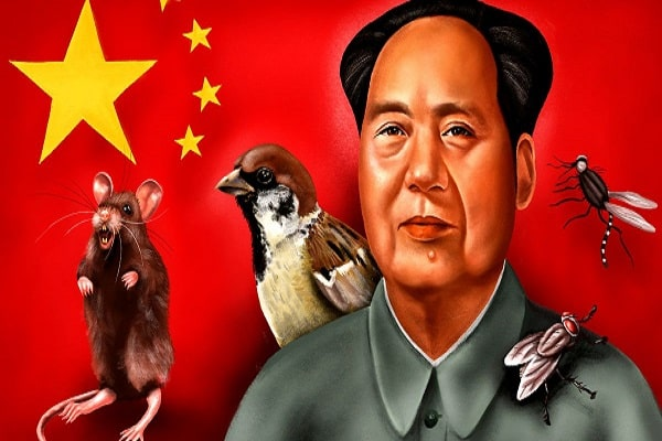 Why Chinese Eat Insects, Who is responsible? Historical Reasons