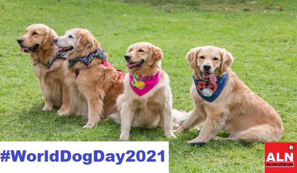 World Dog Day 2021: Theme, History, Dog Day Celebrated on 26th August